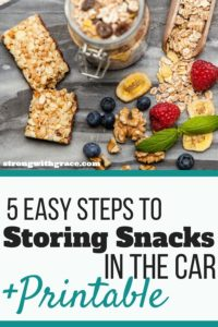 storing-snacks-in-the-car-opt-in-2-200x300